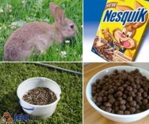 Jak powstają płatki Nesquik