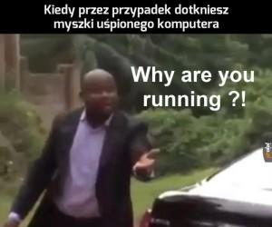 A Ty dokąd?