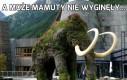 A może mamuty nie wyginęły...