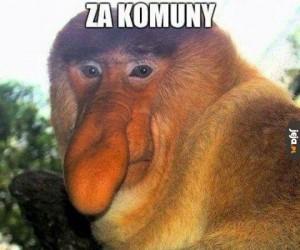 Nostalgiczny Janusz