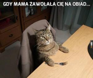 Gdy mama zawołała Cię na obiad...