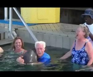 Zabawa z delfinem