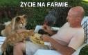 Życie na farmie