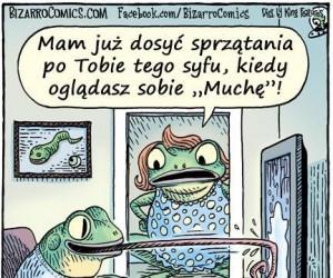 Tymczasem w żabiej rodzinie...