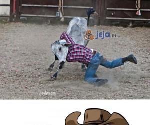 Mistrz rodeo