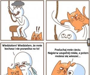 Koci bohater