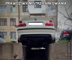 Prawdziwy mistrz parkowania