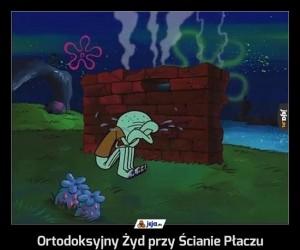 Ortodoksyjny Żyd przy Ścianie Płaczu