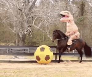 Taki tam, tyranozaur na koniu