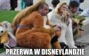 Przerwa w Disneylandzie