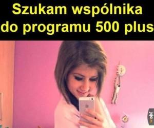 Polowanie na 500+