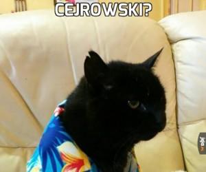 Cejrowski?