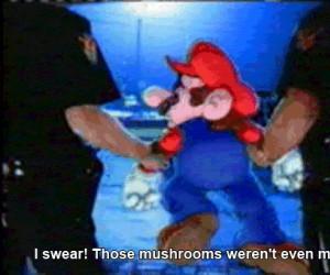 I po co było chwalić się grzybkami?