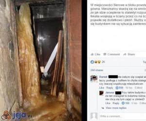 Stalaktyt czy stalagnat? Krótkie przypomnienie z geografii