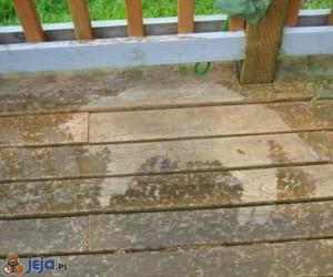 Taras po deszczu