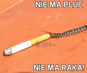 Nie ma płuc