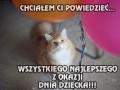Kot chce Ci dziś coś powiedzieć