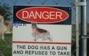 Uwaga, pies ma broń i odmawia przyjęcia leków