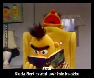 Kiedy Bert czytał uważnie książkę
