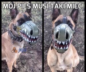 Mój pies musi taki mieć!