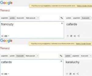 Google chyba ma coś do Francji