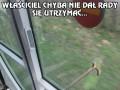 Niecodzienny widok w tramwaju