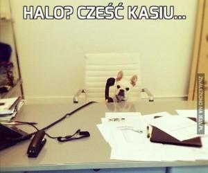 Halo? Cześć Kasiu...