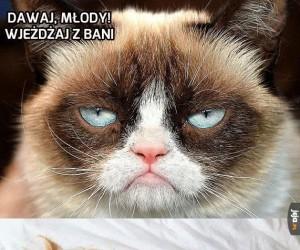 Grumpy radzi