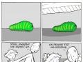 Rodzinne robaki