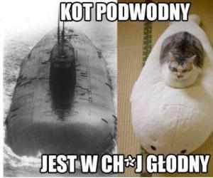 Kot podwodny