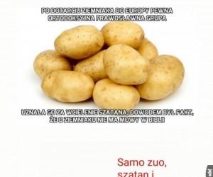 Ziemniaki to zło!