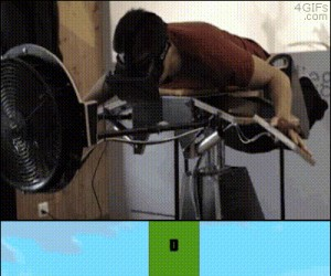 Flappy Birds w 3D