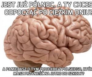 Mózgu, mogłeś przypomnieć, jak miałem czas