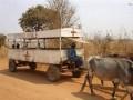 Pogotowie w Afryce