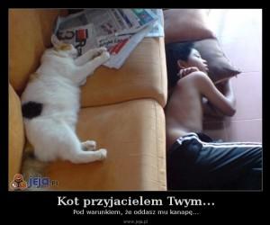Kot przyjacielem Twym...