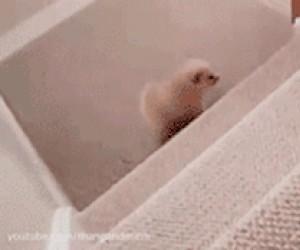 Pierwsze wchodzenie po schodach