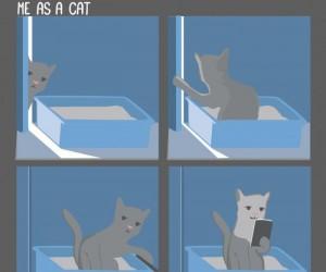 Gdybym był kotem