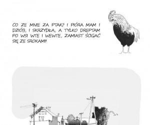 Marzenie kury