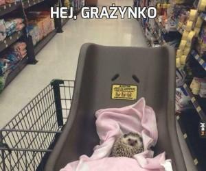 Hej, Grażynko