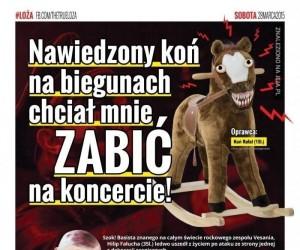 Nawiedzony koń na biegunach