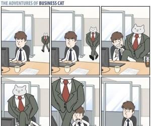 Biznesowy kot chodzi swoimi ścieżkami