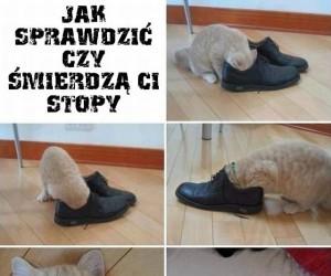 Jak sprawdzić czy śmierdzą Ci stopy