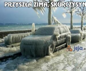 Przyszła zima, skurczysyny!