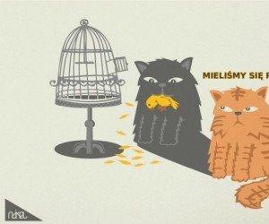 Dwa koty i kanarek