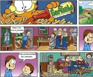 Garfield: Gościna