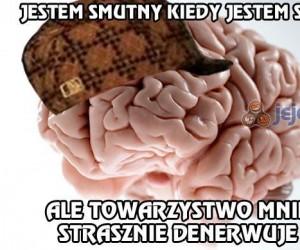 Mój mózg sam nie wie czego chce...