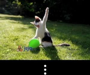 Przeróbka kota z balonem