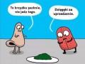 Logika organizmu