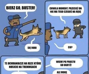 Psie dylematy