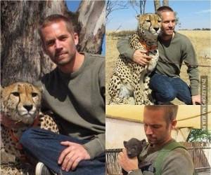 Prawdziwy mężczyzna nie poluje na zwierzęta